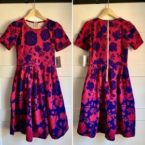 LULAROE | Pink & Navy Floral Amelia Dres XS